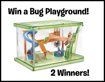 smart-lab-toys-bug-playground