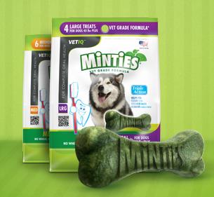minties-free-sample