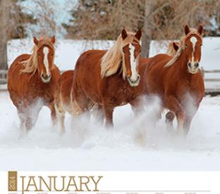 free-horse-calendar