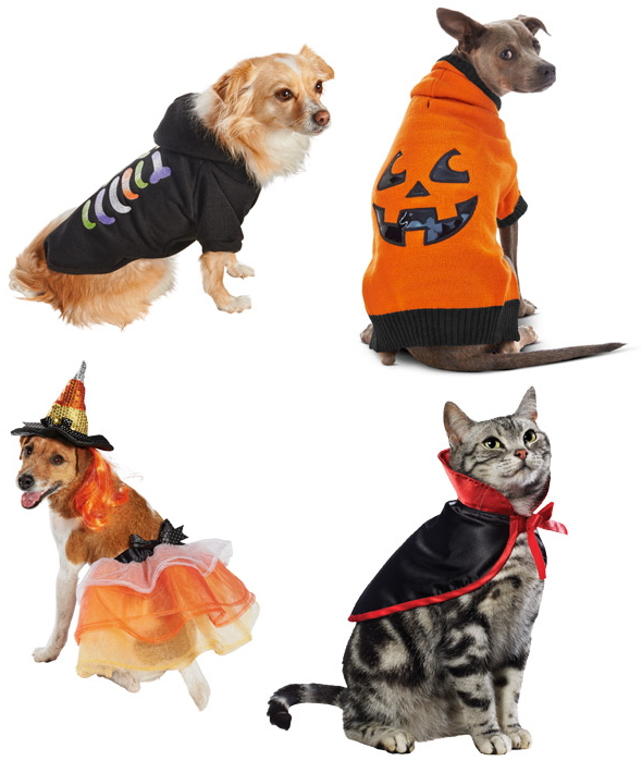 pet-supplies-quickly