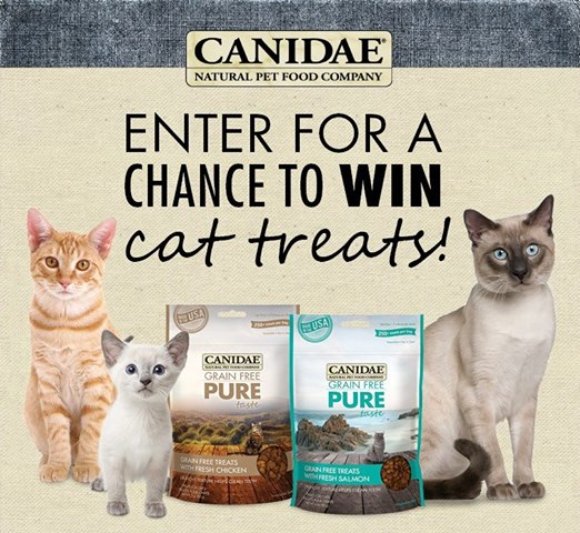 canidae-instant-win-game