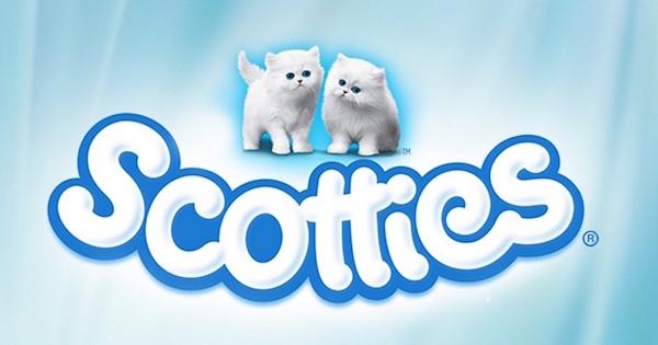 Scotties copy