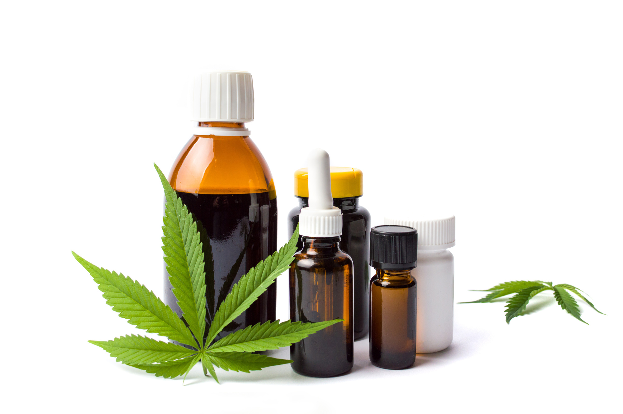 cbd oils and leaves