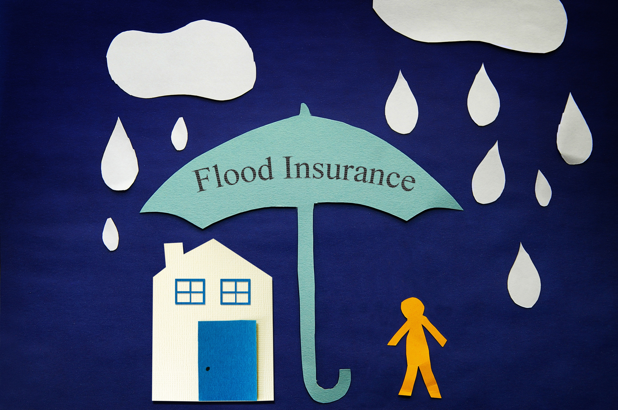 Flood Insurance Visualized