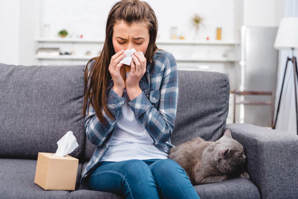 Dust Allergies