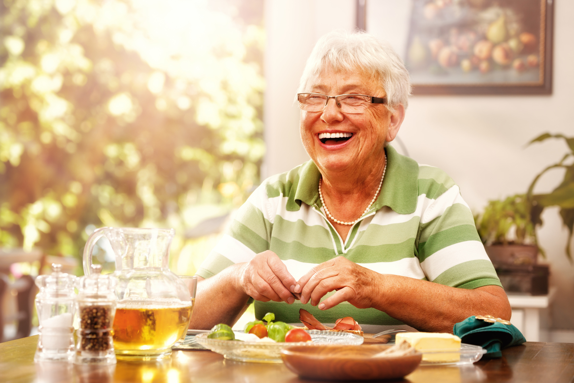In-Home Senior Services